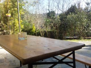 Nice Condo with Deck and Television - Camaiore vacation rentals