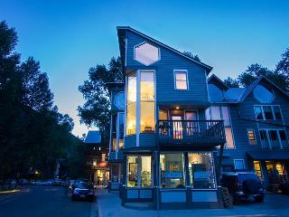 MOUNTAIN VIEW PENTHOUSE - Telluride vacation rentals