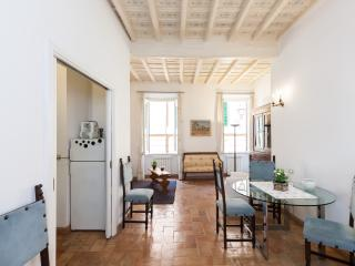 Lovely flat in Trastevere Vicolo S. Margherita - Rome vacation rentals