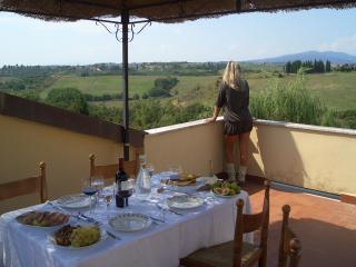 Dimora tipica in campagna a 15 minuti da Firenze - Lastra a Signa vacation rentals