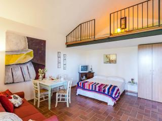 1 bedroom House with Internet Access in Montescudaio - Montescudaio vacation rentals