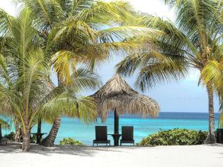 Beach Apartment US25 pp - Bayahibe vacation rentals