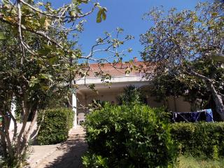 Double room Bingo 50 m from the sea - Novalja vacation rentals