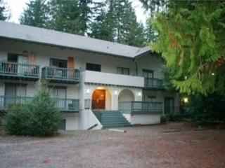CR102vMapleFalls  - #72 Snowline Lodge Condo Sleeps 4! - Glacier vacation rentals