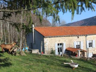 Bright 4 bedroom Gite in Montbrison - Montbrison vacation rentals