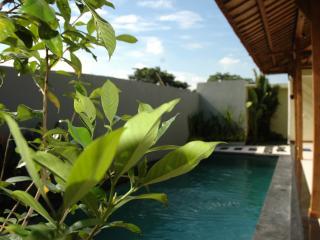 Newly Built 2 Bedroom Villa Near Canggu Club Bali - Mangsit vacation rentals