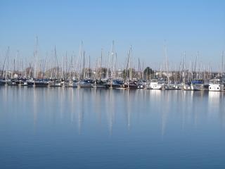 Enjoy the best of both worlds! - Point Richmond vacation rentals