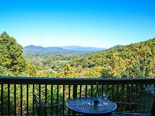 Cozy House with Deck and Internet Access - Candler vacation rentals