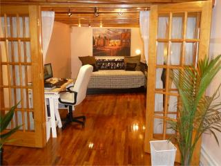 Huge Fancy NYC. Duplex Condo. Slep12 by the Subway - Brooklyn vacation rentals