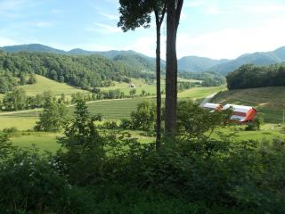 FEB SPECIAL-Log Cabin, View, Pet & Family Friendly - Asheville vacation rentals