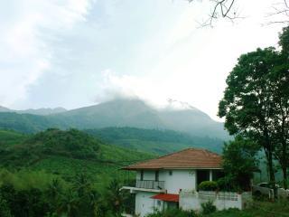 The Jackfruit Tree at Green Valley, Wayanad - Kerala vacation rentals