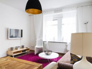 Cozy Condo with Internet Access and Towels Provided - Dresden vacation rentals