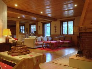 CHALET LA TOCADE CHATEL LINGA Appt 8 personnes - Chatel vacation rentals