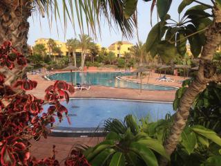 Nice Condo with Deck and Kettle - Corralejo vacation rentals