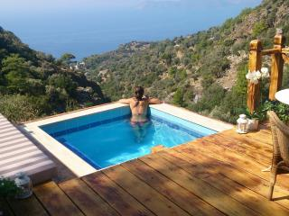 Pure Nature Luxury in the middle of nature! - Fethiye vacation rentals
