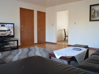 Homey Chicago Condo (2Br-1Ba) - Chicago vacation rentals