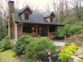 Bearadise Cabin Location: Blowing Rock Area - Lenoir vacation rentals