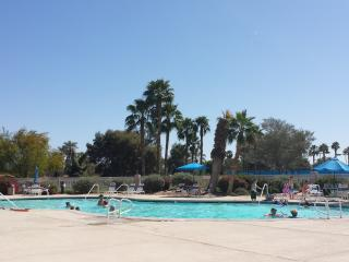 WALK TO COACHELLA & STAGECOACH FESTIVAL! NO DRIVIN - Indio vacation rentals