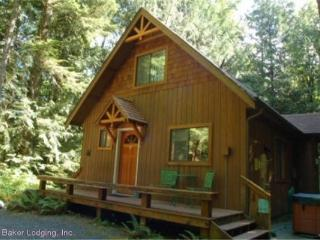 CR102qMapleFalls - Silver Lake #67 Very Private 2-Story Cabin - Deming vacation rentals