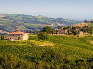 Fabulous Villa Barbi offers complimentary master class in wine, pool & daily cleaning - Orvieto vacation rentals