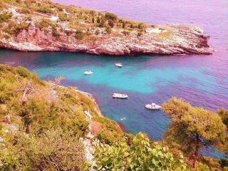 VILLA GIRASOLI   UNA VILLA STORICA IN CALETTA - Gallipoli vacation rentals