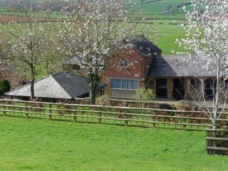 Nice Cottage with Internet Access and Satellite Or Cable TV - Towcester vacation rentals
