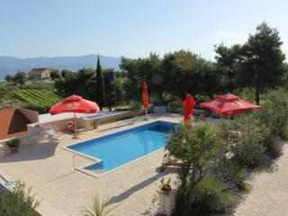 Lovely apartment in a villa with a pool - Donji Humac vacation rentals