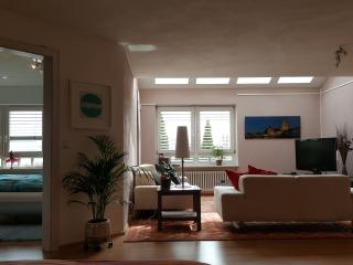 Charming 1 bedroom Apartment in Regensburg - Regensburg vacation rentals