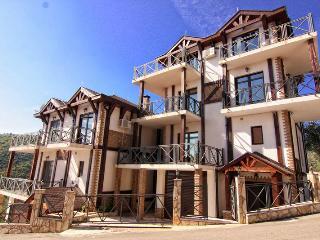 Big Villa Astra 2 for 14 people - Becici vacation rentals