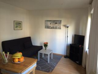 Vacation Apartment in Cologne - 807 sqft, central, modern (# 520) - Frechen vacation rentals