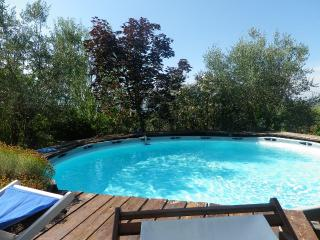 Little country cottage near Lucca, Tuscany - San Macario in Piano vacation rentals