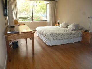180m2 Beautyful and spacious Las Condes appartment - Santiago vacation rentals