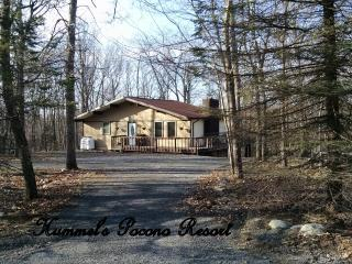 Nice House with Deck and Internet Access - Jim Thorpe vacation rentals