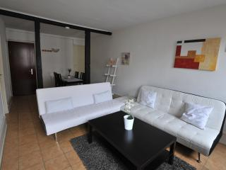 Appartement Patricia - Strasbourg vacation rentals