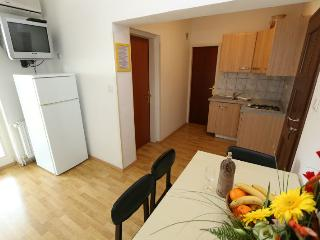 Lovely place for 4 people Zrce beach - Novalja vacation rentals