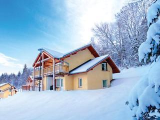 Park & Suies Evian-Lugrin - Évian-les-Bains vacation rentals