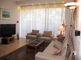 Hayarkon 2R. step to Hilton beach - Tel Aviv vacation rentals