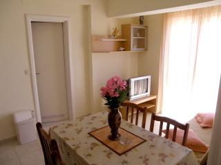 Villa Marica - Apartment A4 with Sea view - Primosten vacation rentals