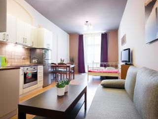 1 bedroom Apartment with Internet Access in Krakow - Krakow vacation rentals