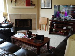 Waterfront Vacations Unit 2 - Summer fills up fast - Corpus Christi vacation rentals