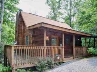 Great Winter Rates on Cozy Cabin! Book Today! - Sevierville vacation rentals