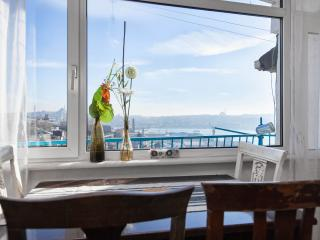 Bosphorus view with Balcony... - Istanbul vacation rentals