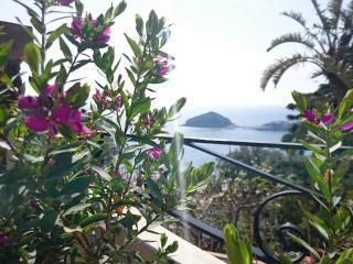Case Vacanza Isola d'Ischia 2 - Barano d'Ischia vacation rentals