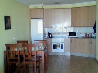 Rented a new apartment in the south of Tenerife - El Medano vacation rentals
