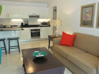 Comfortable Condo with Internet Access and Washing Machine - Holetown vacation rentals