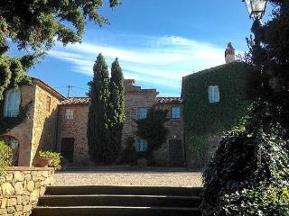 Villa Santa Maria - Vinci vacation rentals