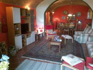 Beautiful two bedroom apartment in Tuscany - Montespertoli vacation rentals
