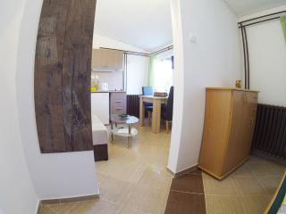 Charming Studio with Internet Access and Central Heating - Novi Sad vacation rentals
