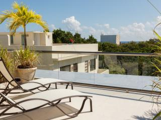 Penthouse from HGTV-Caribbean Life 5th ave 38th st - Playa del Carmen vacation rentals