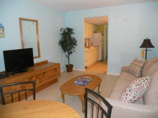 Very cozy 1 BD Ocean-View 50% off winter specials - Myrtle Beach vacation rentals